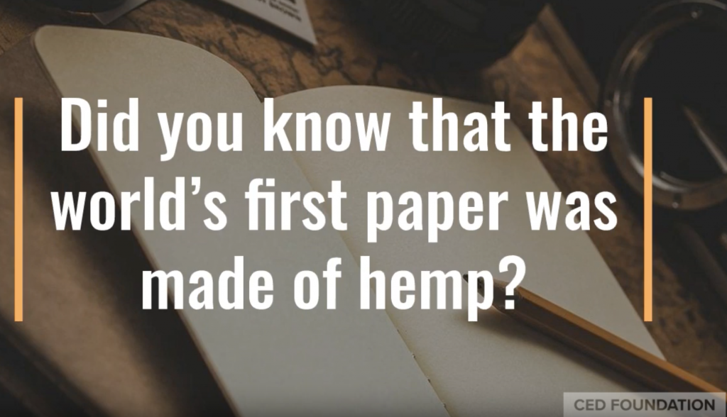 did you know the world's first paper was made of hemp