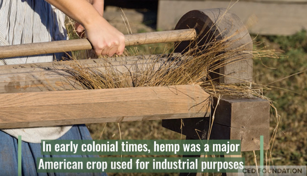 early colonial times, hemp was a major american crop